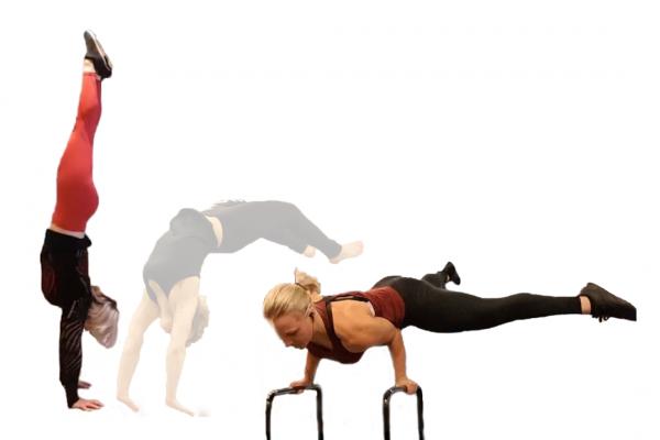 handstand-trainer